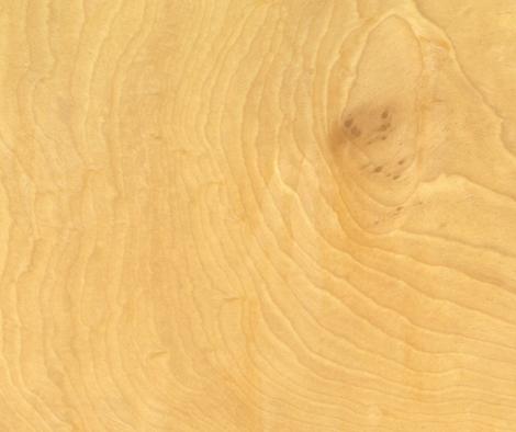 トチの木目