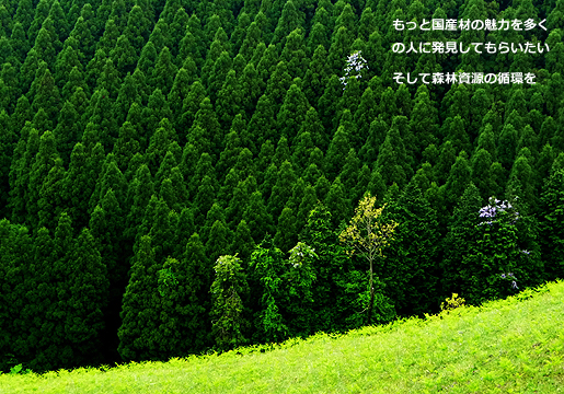 We want many people to discover charm of Japanese lumber more.